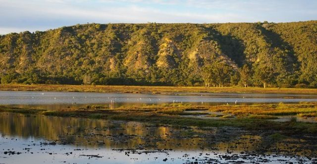 The Bitou Wetland and Valley is situated in the town of Plettenberg Bay on the…