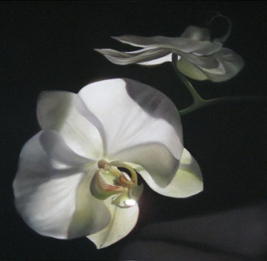 White Afternoon - Nicora Gangi