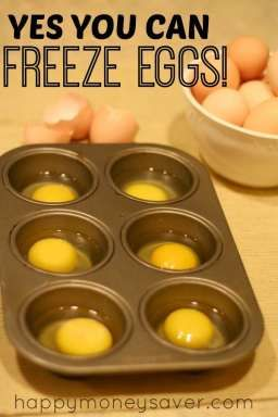 Can you freeze eggs? YES you can! Here is a post on how to properly freeze eggs to use later. happymoneysaver.com
