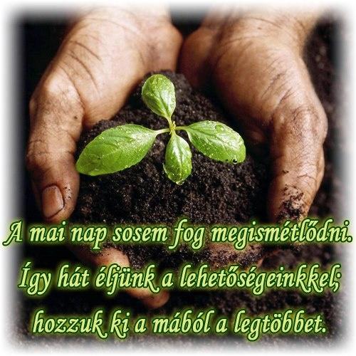 A mai nap sosem fog megismétlődni. Így hát éljünk a lehetőségeinkkel; hozzuk ki a mából a legtöbbet. # www.facebook.com/angyalimenedek