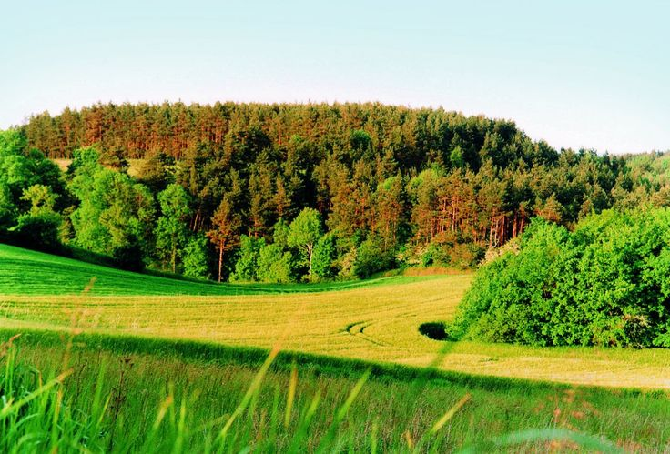 Alpejskie krajobrazy wsi Tymawa