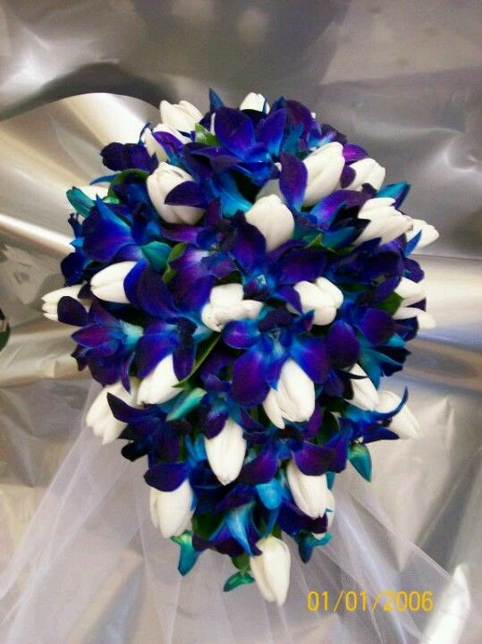 My wedding bouquet! Blue orchids and white tulips.