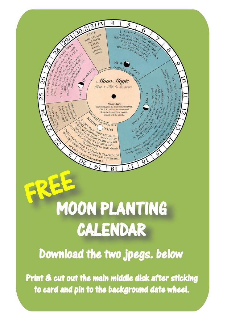 MOON PLANTING CALENDAR - Certified Oganic, Open-Pollinated, Standard, Traditional and Heirloom Seed