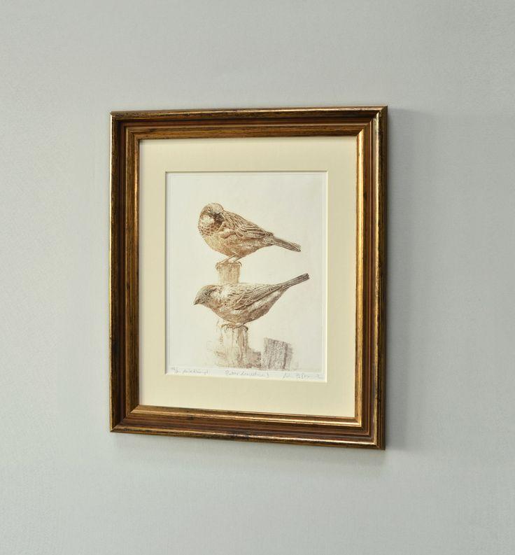 #sparrow #AdamPoltorak #copperplate