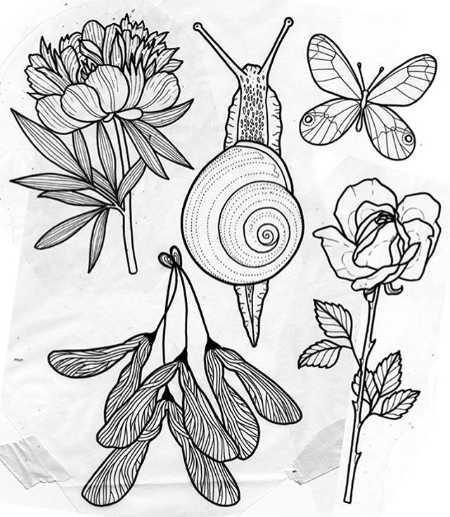 """gristletattoo: """" @tilldthtattoo finally made it and has some designs available she would love to do (especially the snail)!! She'll be here through the end of the month. To make an appointment email her at herzdame@tilldthtattoo.com. #guestspot..."""