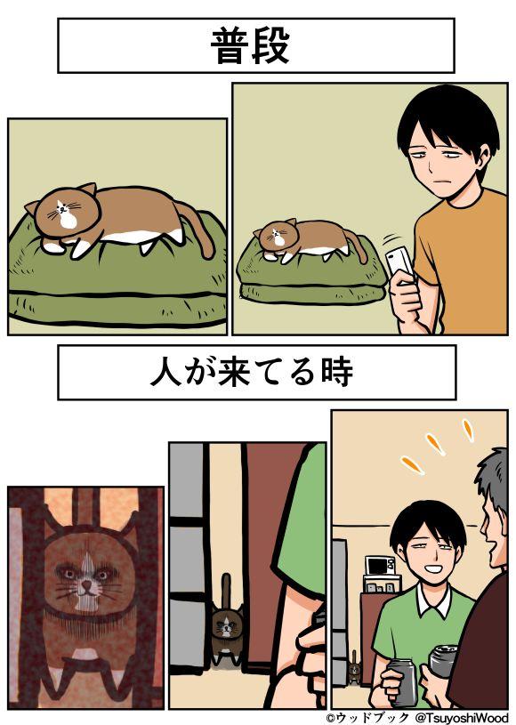 Tumblr: golhan:  うちの猫人が来た時の顔が違う | ウッドブック