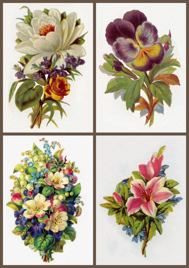 ArtbyJean - Vintage Clip Art: Four Vintage Prints - Collage Sheet. ..♥..Nims..♥