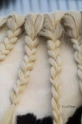 Detail-Assignment---Braids_1_1.jpg