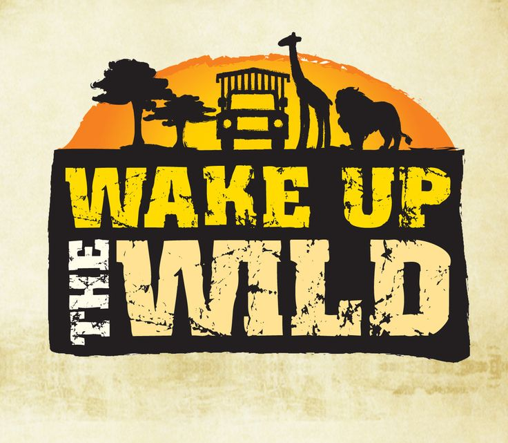 New, Exclusive Safari Adventure! Go Behind the Scenes! #africanlionsafari #behindthescenes #VIPtour