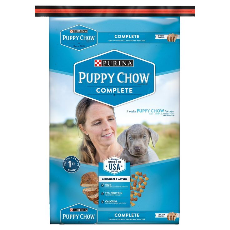 Purina Puppy Chow Complete Dry Dog Food - 16.5lbs