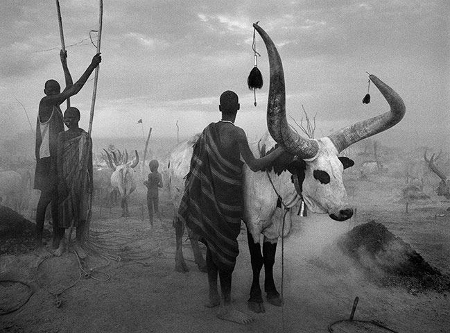 "Sebastião Salgado ""A Dinka group at Pagarau cattle camp, Southern Sudan"""
