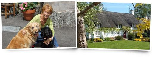 house sitting jobs -- Trusted House Sitters.com