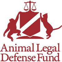 This is a good resource and organization to know about (unfortunately) Investigating and Prosecuting Animal Abuse | Animal Legal Defense Fund