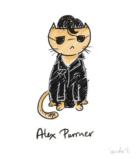 Alex Turner - Arctic Monkeys - cat version