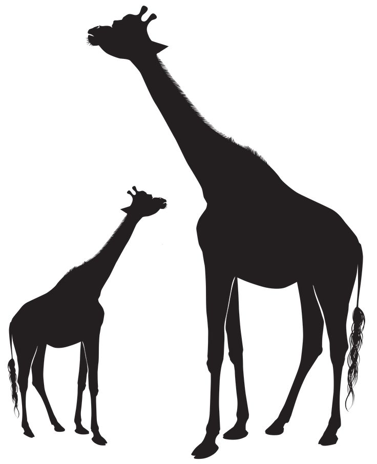 Best 25+ Giraffe silhouette ideas on Pinterest | Giraffes ...