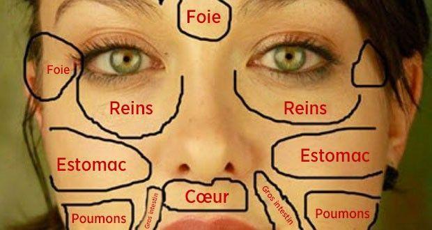 Les problèmes de peau du visage peuvent révéler l'état des organes du corps. Plus de détails sur la carte du visage chinoise !