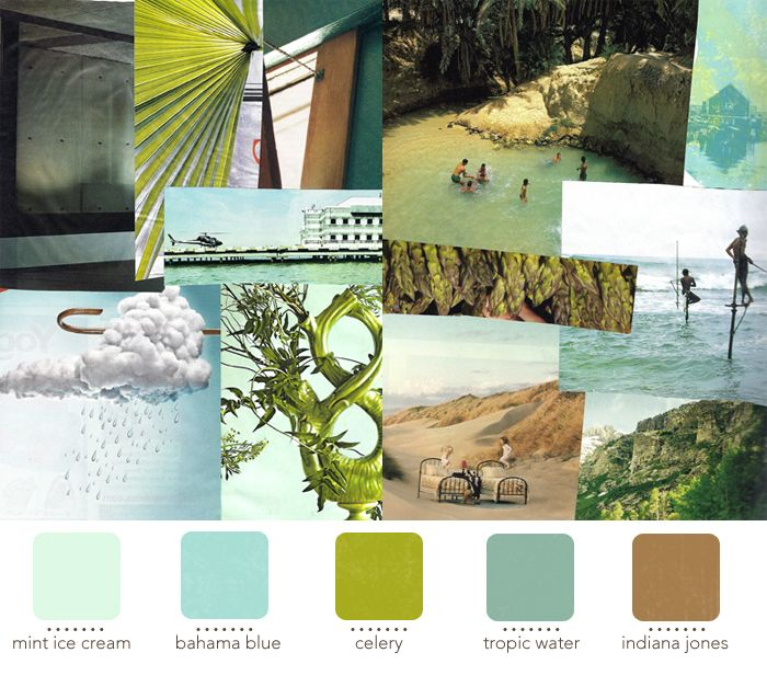 38 Best Paint Color Schemes Celery Green Images On: Best 25+ Tropical Colors Ideas On Pinterest