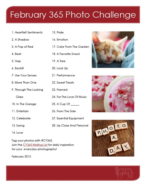 February 365 Photo Challenge List from Capture Your 365 from katrina kennedy