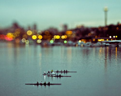 City Rowing   #Rowing #lights #serenity