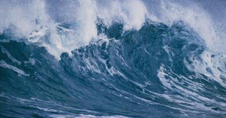 Cómo protegerte de un tsunami. Los tsunamis son desastres naturales aterradores pero relativamente raros que producen grandes olas que se estrellan contra la tierra, destruyendo potencialmente todo a su paso. Mucho más grandes que las olas comunes, las ondas de marea de un tsunami pueden llegar a los 100 pies (30,48 m) de altura y se mueven a más de 400 millas por hora (643,73 ...