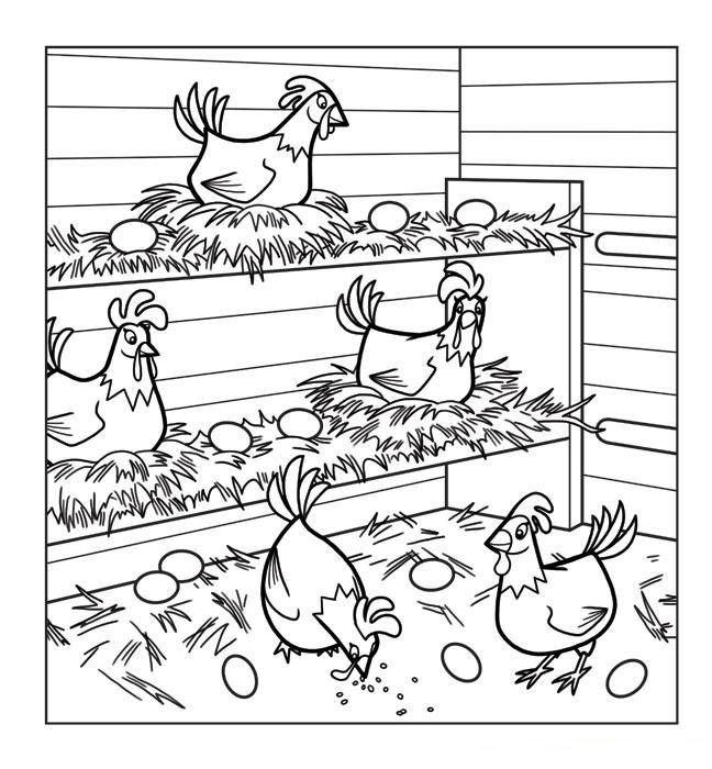 Chicken Coloring Pages Chicken Coloring Pages Animal Coloring