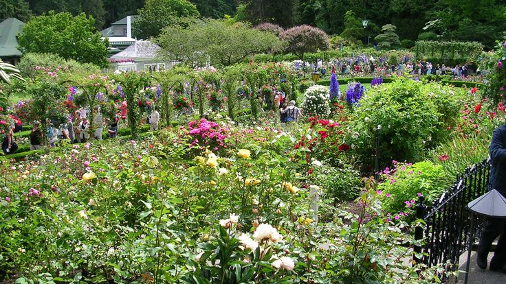 wallpaper-Butchart-Gardens-is-a-garden-flower-tourism,-colombia