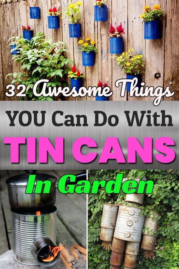32 Awesome Things YOU can Do with Tin Cans in Garden