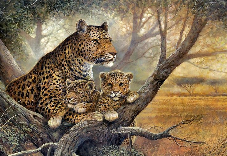 Kaplan Ve Yavruları