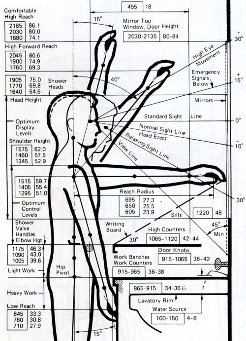 83 best anthropometrics, ergonomics and architectural graphic