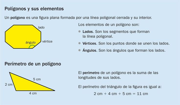 elementos polígonos