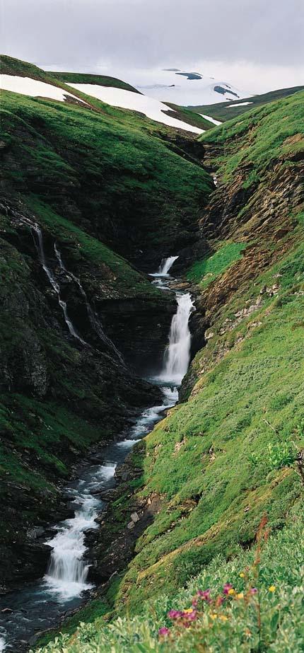 ♥ Vadvetjåkka National Park is the northern most national park in Sweden.