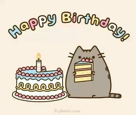 Gato y torta