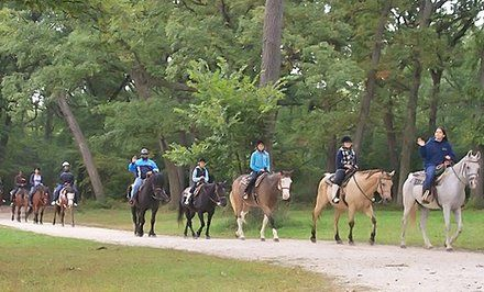 42% Off Horseback Riding