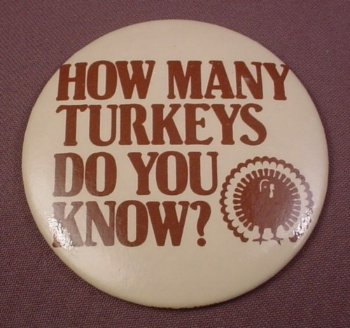 How Many Turkeys Do You Know