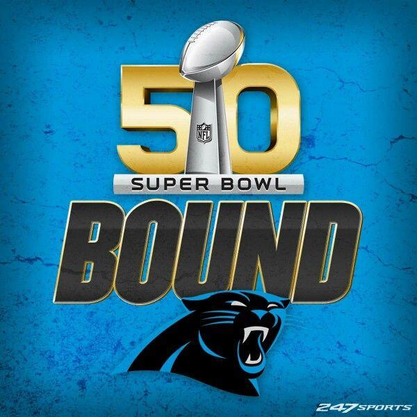 My Carolina Panthers!!!!