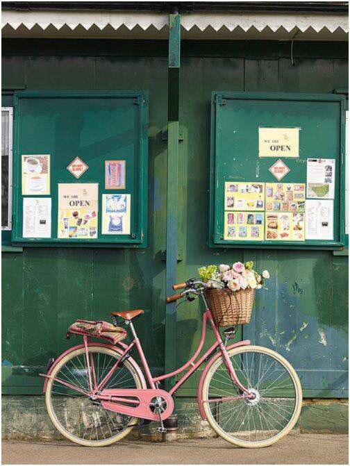 spring,bicycle and flowers