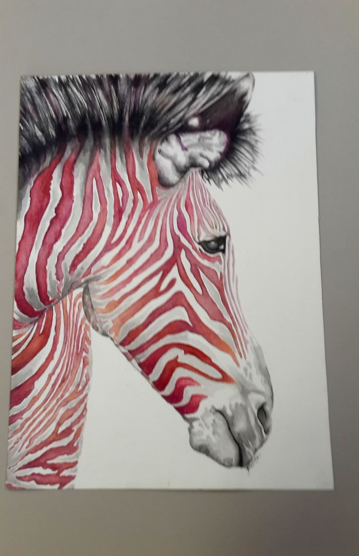 watercolour zebra 2014