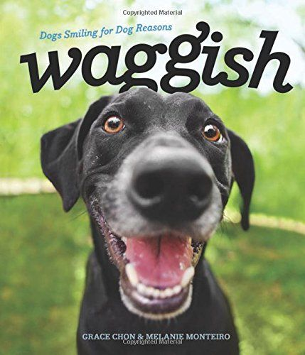 Waggish: Dogs Smiling for Dog Reasons by Grace Chon
