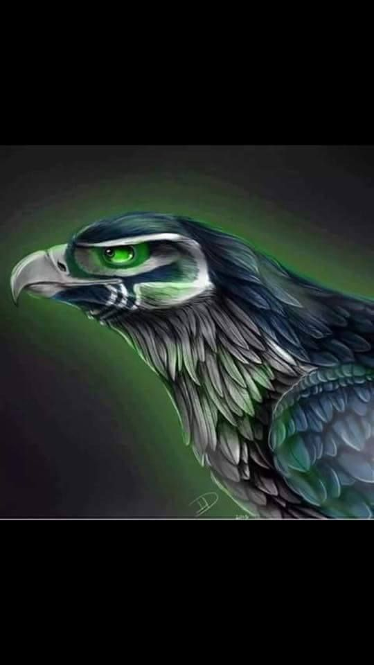 Eye of the Hawk!!