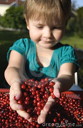 Girl with Ripe cowberries in the autumn