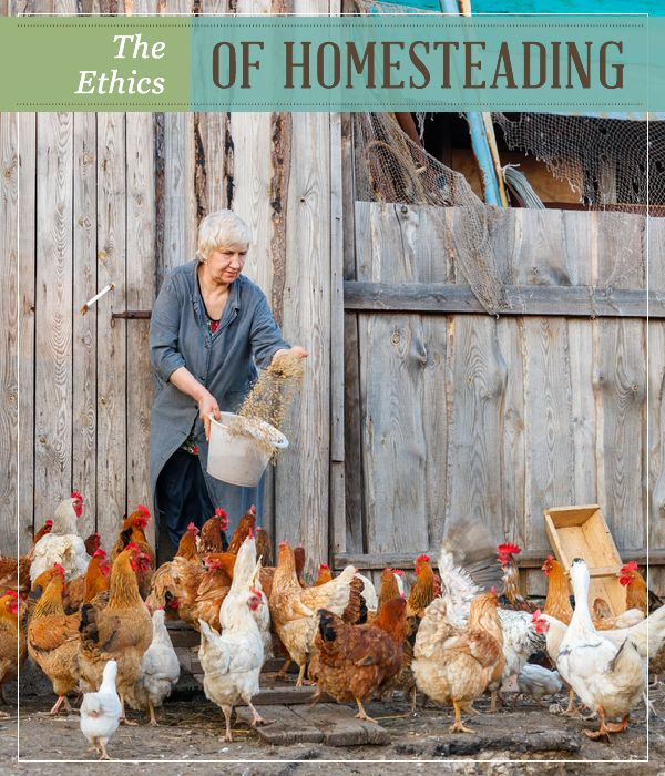 The Ethics of Homesteading | Homestead Tips, Ideas, DIY projects and recipes for self reliant living