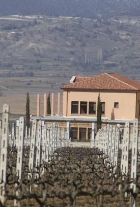 Winery in the northwest part of Greece, the Amyndeon, Florina region.