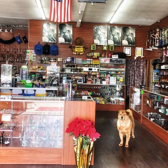 How can sandy help you today?? CBD CBD CBD!!! Best prices in town all day every day. We will beat any deal. Order on Ig, it'll be waiting in the store for you. #curbsideservice #smokeshop #ibsmokeshop #imperialbeach #420life #glasspipe #waterpipe #hookah #smoker #stonersociety #bubbler #cartridges #cbdcartridge #vapefam #eliquid #highlife #recreationalmarijuana #cannabiscommunity  #prop215 #sandiego #hemp #cbd #imperialbeachlocals #sandiegoconnection #sdlocals #iblocals - posted by IB Smoke…