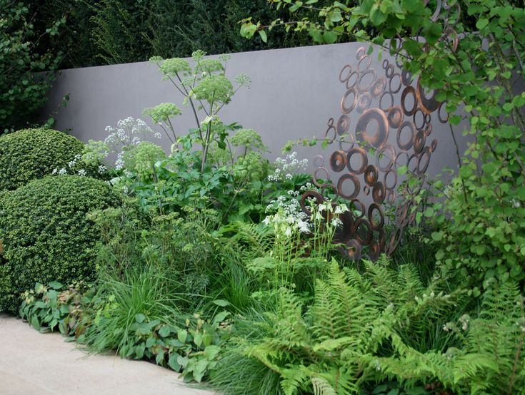 29 best images about plants for shady places on pinterest for Shrubs for garden borders