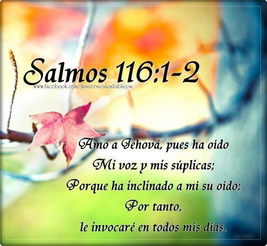 Salmo 116:1 - 2 Amo a Jehová, pues ha oído    Mi voz y mis súplicas; Porque ha inclinado a mí su oído; Por tanto, le invocaré en todos mis días.