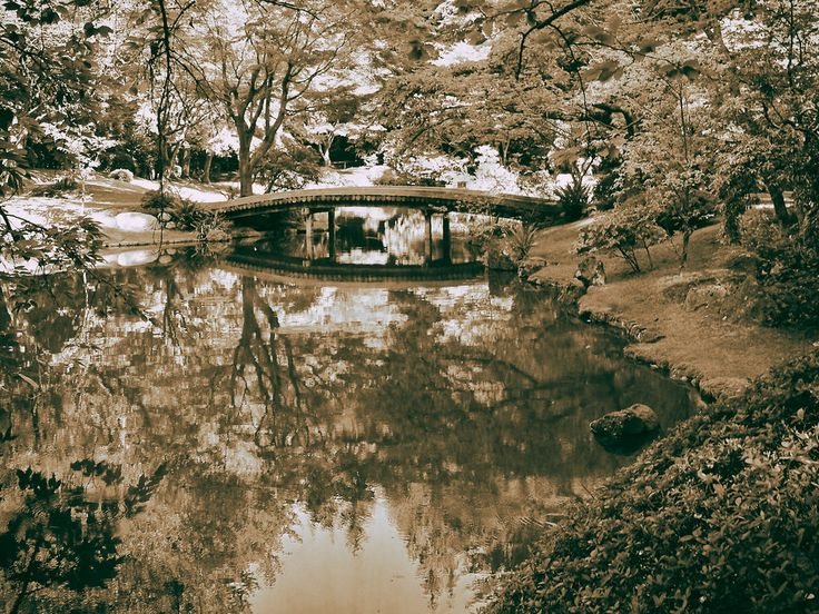Bridge, Nitobe Garden
