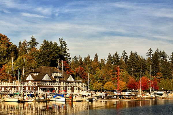 Another shot in Stanley Park