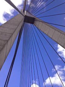Four Seasons: Walking the Anzac Bridge