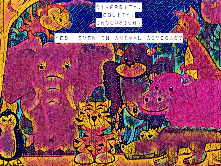 Diversity, Inclusion, and Opportunities: An Interview with Animal Charity Evaluators