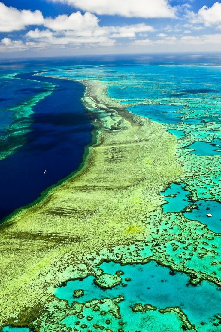 The Great Barrier Reef is the world's largest coral reef system composed of over 2,900 individual reefs and 900 islands stretching for over 2,600 kilometres (1,600 mi) over an area of approximately 344,400 square kilometres (133,000 sq mi). The reef is located in the Coral Sea, off the coast of Queensland in north-east Australia.